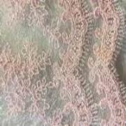 kruzhevo-Orhideya-bledno-rozovaya
